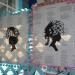 16x20 Pom Pom Poem Pages Silhouettes