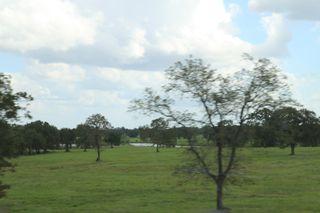 Texas2010 009